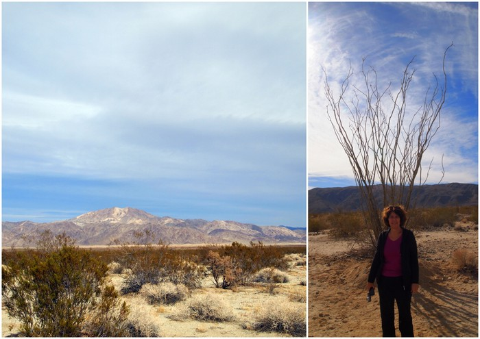 Pinto Mountain, Carol posing with an Ocotillo