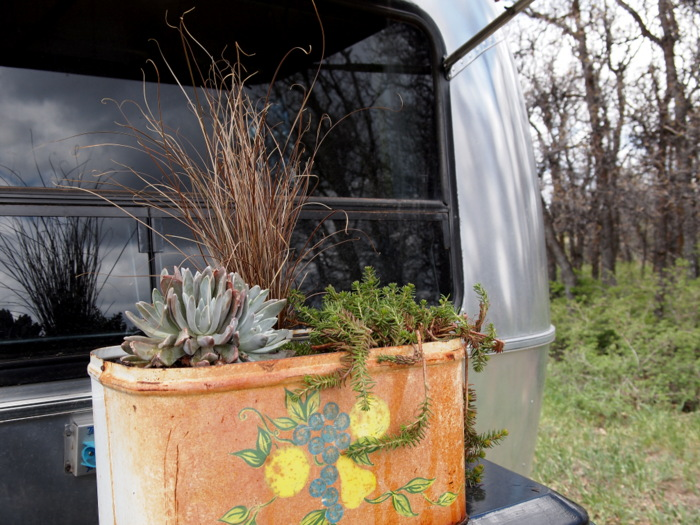 The traveling planter in all its glory.