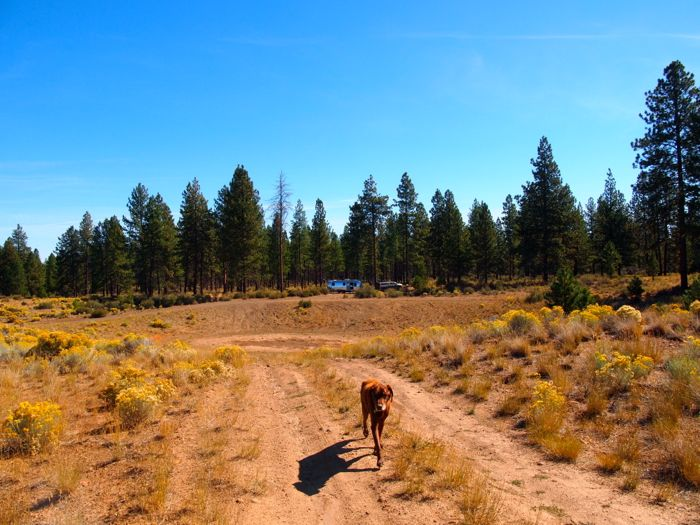 bend boondocking