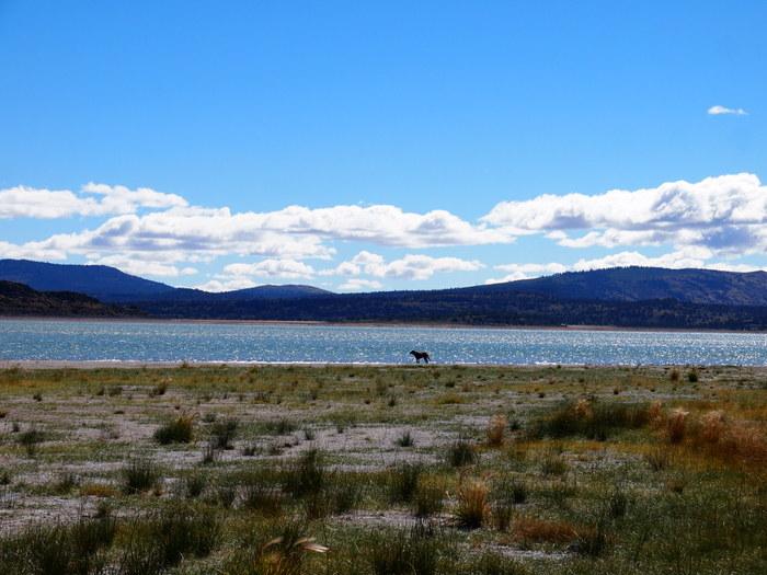 eagle lake boondocking