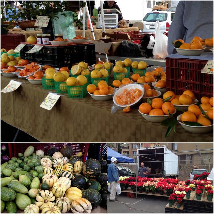Citrus, Winter squash & Pointsettias