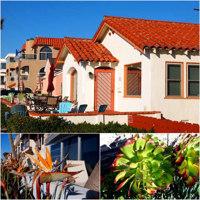 Colorful cottages + plants on the boadrwalk