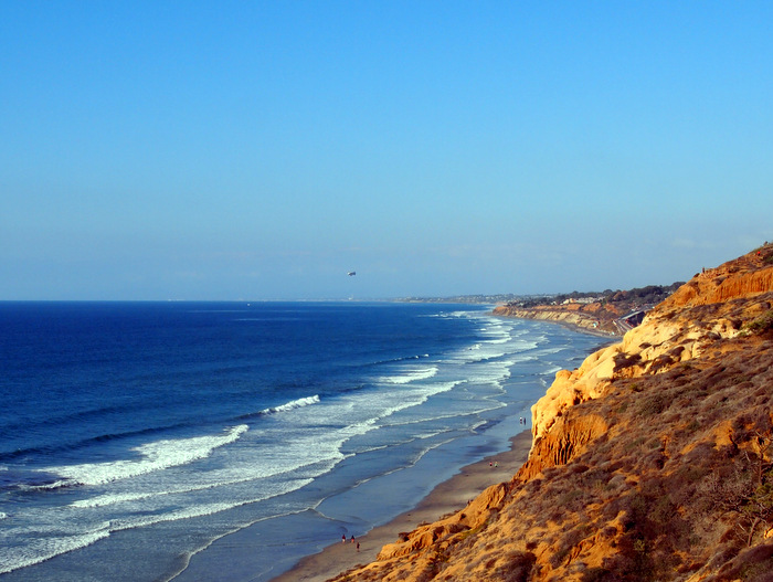 On the top of the cliffs at Torrey Pines