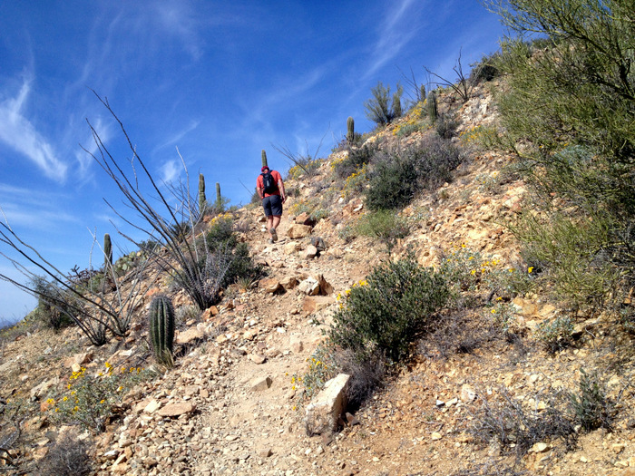 A steep section of the trail