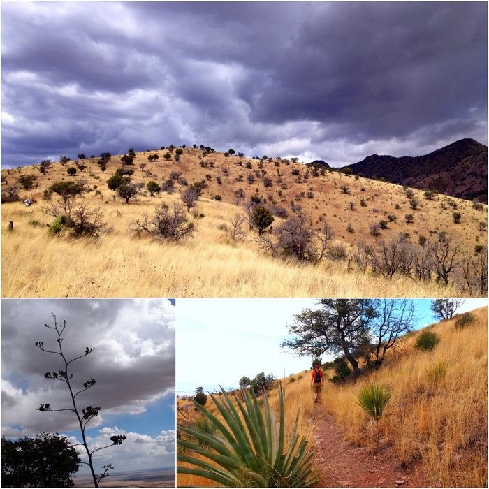 Joe's Canyon Trail