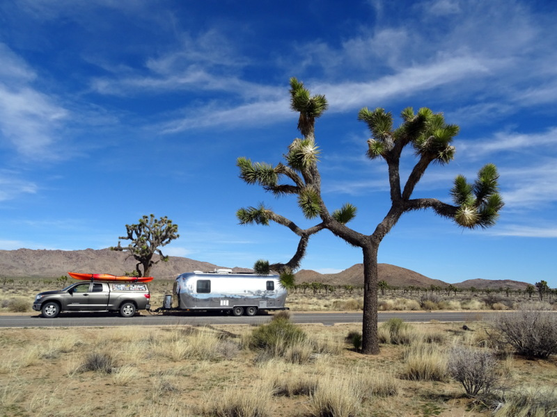 joshua-tree-boondocking