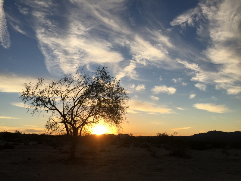 Joshua Tree Boondocking