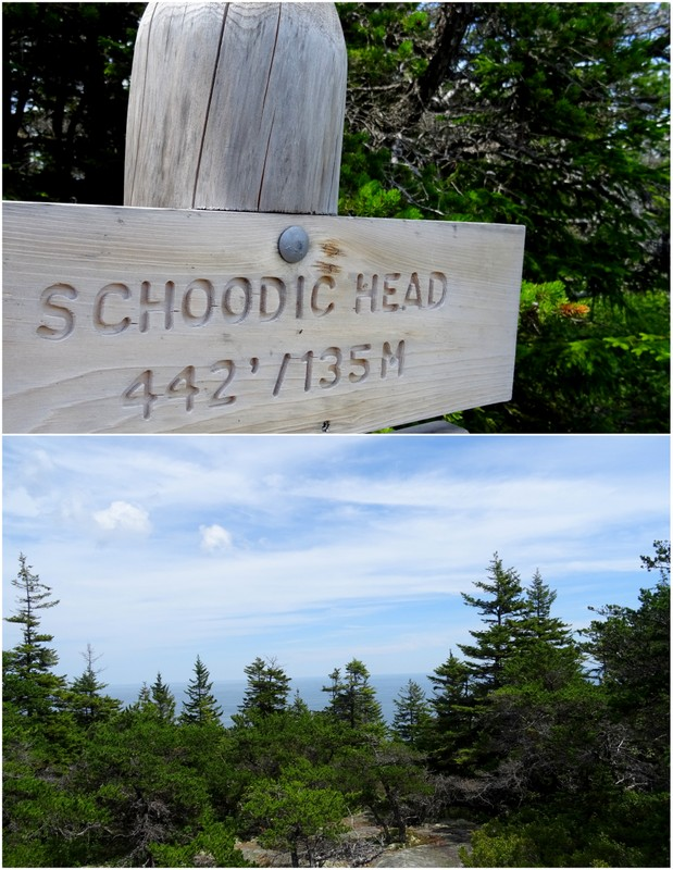Schoodic Peninsula