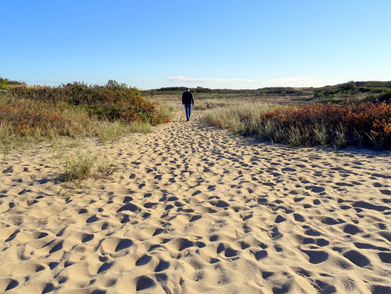 Long Point, Cape Cod