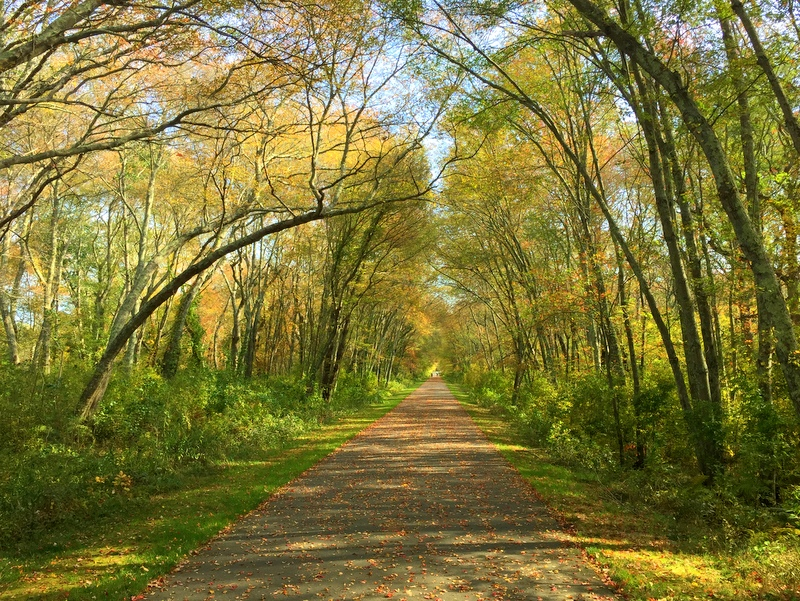 South Country Bike Path