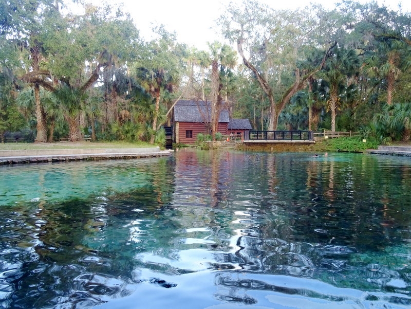 Juniper Springs, FL