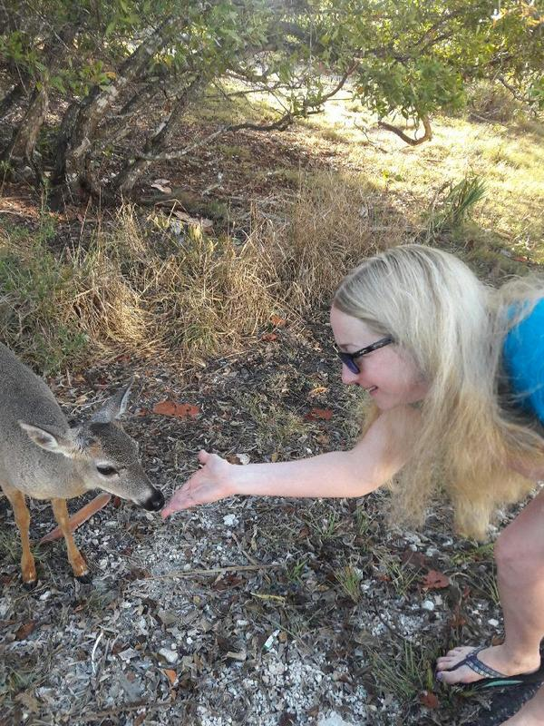 Making friends with the Key Deer