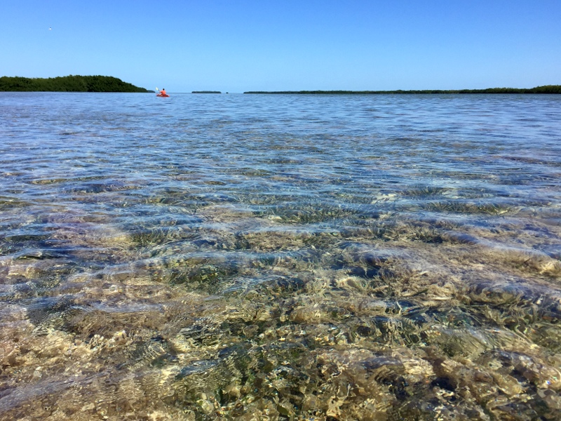 Kayaking the Florida Keys