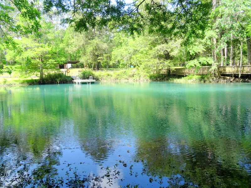 Blue Hole at Florida Caverns State Park
