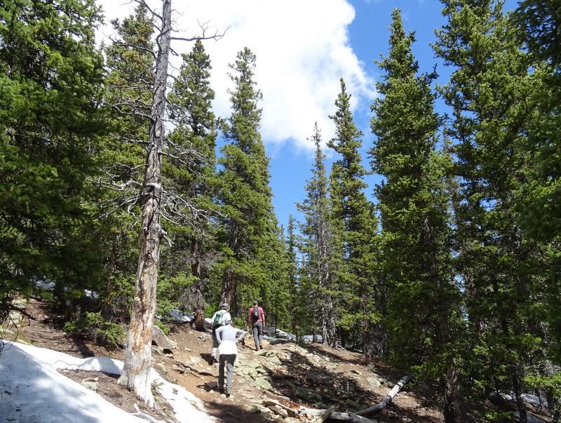 chief-mountain-trail-colorado