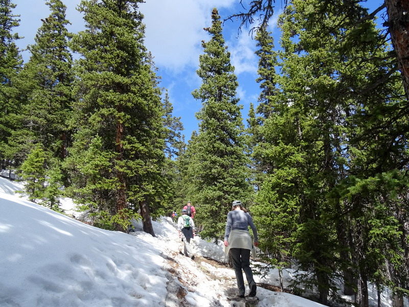 Chief Mountain Trail, CO