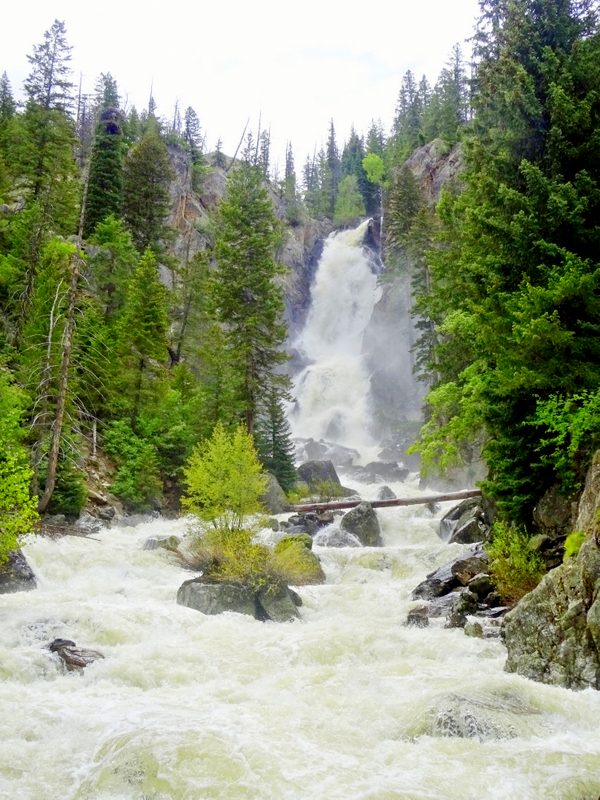 Fish Creek Falls, Steamboat Springs