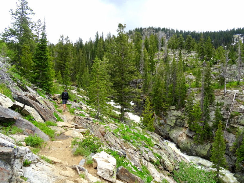Fish Creek Falls Trail, Steamboat Springs