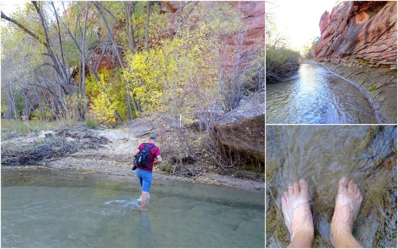 Phipps Arch Trail - Escalante, Utah