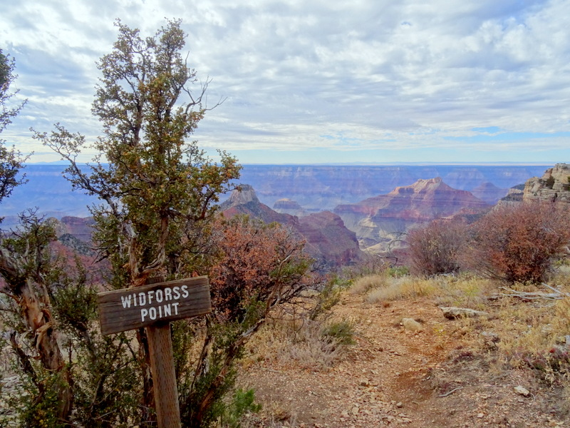 Widforss Trail, North Rim Grand Canyon