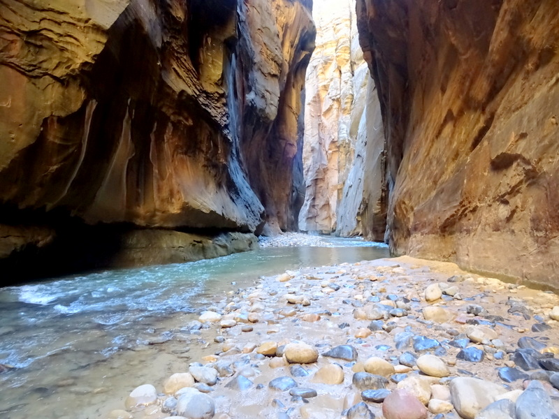 Zion Narrows Hike