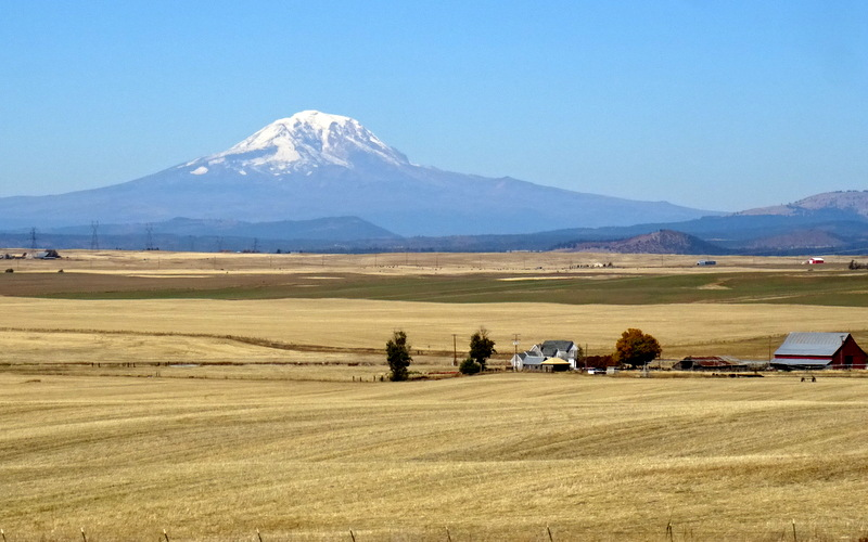 Mount Adams in Washington