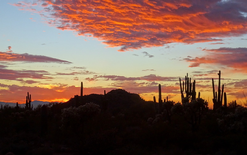 Southwest sunset at Usery Mountain Park