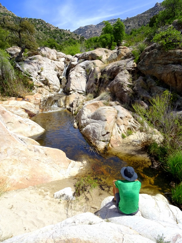 Romero Pools Trail at Catalina State Park